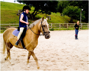 Horse riding lessons for beginners and experienced riders.